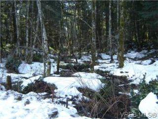 Photo 7: 751 Trans Canada Hwy in MALAHAT: ML Malahat Proper Land for sale (Malahat & Area)  : MLS®# 494468