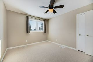 Photo 19: 10850 32A Avenue in Edmonton: Zone 16 House for sale : MLS®# E4188261