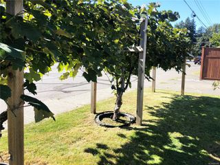 Photo 17: B 1140 Edgett Rd in : CV Courtenay City Half Duplex for sale (Comox Valley)  : MLS®# 855308