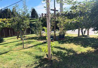 Photo 19: B 1140 Edgett Rd in : CV Courtenay City Half Duplex for sale (Comox Valley)  : MLS®# 855308
