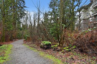 "Photo 17: 306 33338 E BOURQUIN Crescent in Abbotsford: Central Abbotsford Condo for sale in ""Natures Gate"" : MLS®# R2527023"