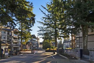 "Photo 20: 306 33338 E BOURQUIN Crescent in Abbotsford: Central Abbotsford Condo for sale in ""Natures Gate"" : MLS®# R2527023"
