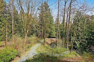 "Photo 21: 306 33338 E BOURQUIN Crescent in Abbotsford: Central Abbotsford Condo for sale in ""Natures Gate"" : MLS®# R2527023"