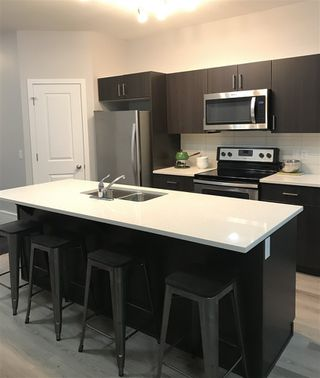 Photo 3: 1430 169 Street in Edmonton: Zone 56 House Half Duplex for sale : MLS®# E4177432