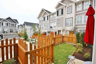 Photo 4: 19 7169 208A Street in Langley: Willoughby Heights Townhouse for sale : MLS®# R2489879