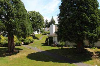 Photo 15: 7 12915 16 AVENUE in Surrey: Crescent Bch Ocean Pk. Home for sale ()  : MLS®# R2081228