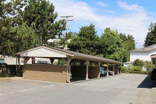 Photo 16: 7 12915 16 AVENUE in Surrey: Crescent Bch Ocean Pk. Home for sale ()  : MLS®# R2081228