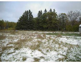 Photo 10: 132 E ROAD 81 Road North in ARGYLE: Argyle / Balmoral / Grosse Isle / Gunton / Stony Mountain / Stonewall / Marquette / Warren / Woodlands Residential for sale (Winnipeg area)  : MLS®# 2919092