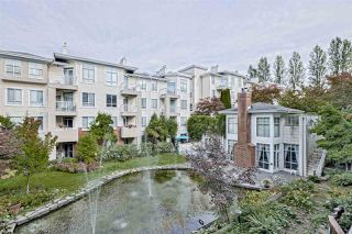 "Photo 15: 223 383 E 37TH Avenue in Vancouver: Main Condo for sale in ""MAGNOLIA GATE"" (Vancouver East)  : MLS®# R2410776"