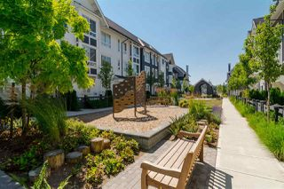 """Photo 36: 55 8438 207A Street in Langley: Willoughby Heights Townhouse for sale in """"YORK by MOSAIC"""" : MLS®# R2501982"""