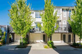 """Photo 29: 55 8438 207A Street in Langley: Willoughby Heights Townhouse for sale in """"YORK by MOSAIC"""" : MLS®# R2501982"""