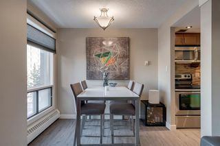 Photo 7: 501 1323 15 Avenue SW in Calgary: Beltline Apartment for sale : MLS®# A1057664