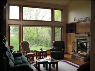 Photo 5: 316 Turnbull Drive in WINNIPEG: Fort Garry / Whyte Ridge / St Norbert Residential for sale (South Winnipeg)  : MLS®# 1008355