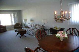 Photo 4: 551 Colyer Street in Beaverton: House (Bungalow-Raised) for sale (N24: BEAVERTON)  : MLS®# N1621265