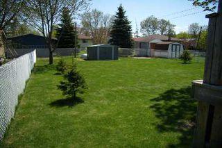 Photo 9: 551 Colyer Street in Beaverton: House (Bungalow-Raised) for sale (N24: BEAVERTON)  : MLS®# N1621265