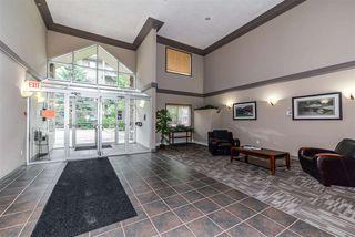 Photo 17: 305 279 SUDER GREENS Drive in Edmonton: Zone 58 Condo for sale : MLS®# E4165388