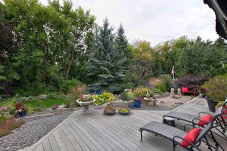 Photo 23: 124 WOLF WILLOW Close in Edmonton: Zone 22 House for sale : MLS®# E4170282