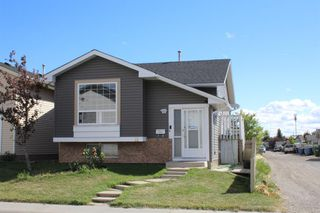 Main Photo: 11 MARTINWOOD Road NE in Calgary: Martindale Detached for sale : MLS®# A1030585