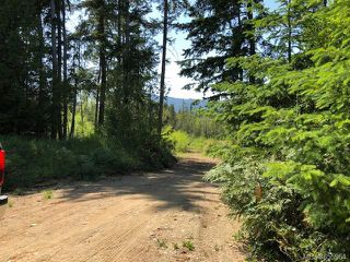 Photo 4: LT E Horne Lake Rd in : PQ Qualicum Beach Land for sale (Parksville/Qualicum)  : MLS®# 855964