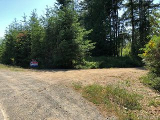 Photo 3: LT E Horne Lake Rd in : PQ Qualicum Beach Land for sale (Parksville/Qualicum)  : MLS®# 855964