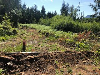 Photo 8: LT E Horne Lake Rd in : PQ Qualicum Beach Land for sale (Parksville/Qualicum)  : MLS®# 855964