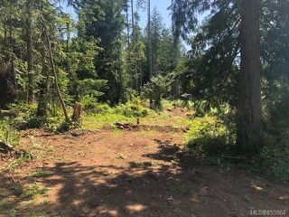 Photo 6: LT E Horne Lake Rd in : PQ Qualicum Beach Land for sale (Parksville/Qualicum)  : MLS®# 855964