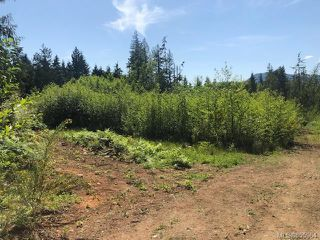 Photo 7: LT E Horne Lake Rd in : PQ Qualicum Beach Land for sale (Parksville/Qualicum)  : MLS®# 855964