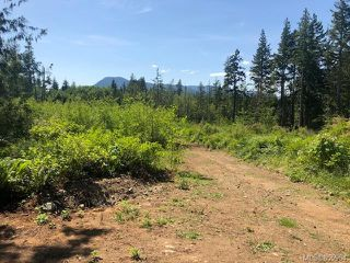 Photo 5: LT E Horne Lake Rd in : PQ Qualicum Beach Land for sale (Parksville/Qualicum)  : MLS®# 855964