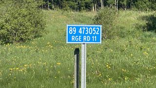Photo 11: 89 473052 Range Road 11: Rural Wetaskiwin County Rural Land/Vacant Lot for sale : MLS®# E4214755