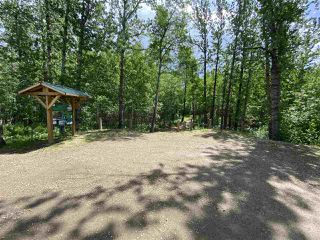Photo 14: 89 473052 Range Road 11: Rural Wetaskiwin County Rural Land/Vacant Lot for sale : MLS®# E4214755
