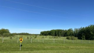 Photo 6: 89 473052 Range Road 11: Rural Wetaskiwin County Rural Land/Vacant Lot for sale : MLS®# E4214755