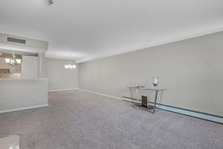 Photo 16: 319 9449 19 Street SW in Calgary: Palliser Apartment for sale : MLS®# A1050342