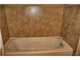 Photo 8: 1541 San Juan Ave in VICTORIA: SE Gordon Head House for sale (Saanich East)  : MLS®# 481609
