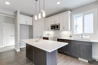 Photo 6: 8441 CUSHING Court SW in Edmonton: Zone 55 House for sale : MLS®# E4178917