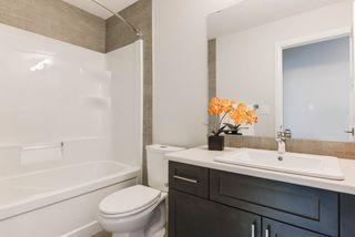 Photo 19: 8441 CUSHING Court SW in Edmonton: Zone 55 House for sale : MLS®# E4178917