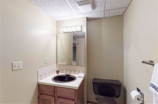 Photo 22: 2667 89 Street in Edmonton: Zone 29 House for sale : MLS®# E4184740