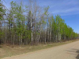 Photo 3: 50 Avenue & RR 281: Rural Wetaskiwin County Land Commercial for sale : MLS®# E4194443