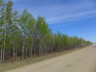 Photo 1: 50 Avenue & RR 281: Rural Wetaskiwin County Land Commercial for sale : MLS®# E4194443
