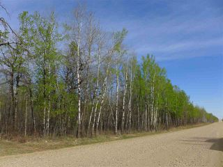 Photo 4: 50 Avenue & RR 281: Rural Wetaskiwin County Land Commercial for sale : MLS®# E4194443