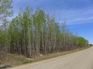 Photo 6: 50 Avenue & RR 281: Rural Wetaskiwin County Land Commercial for sale : MLS®# E4194443