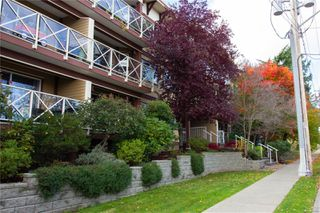 Photo 3: 403 481 Kennedy St in : Na Old City Condo for sale (Nanaimo)  : MLS®# 859544