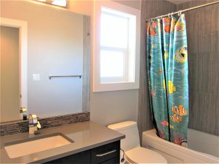 Photo 24: 9008 181 Avenue in Edmonton: Zone 28 House for sale : MLS®# E4167395