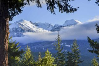 "Photo 20: 9483 EMERALD Drive in Whistler: Emerald Estates House for sale in ""EMERALD ESTATES"" : MLS®# R2396056"