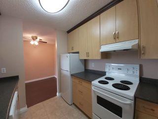 Photo 3: 411 600 KIRKNESS Road in Edmonton: Zone 35 Condo for sale : MLS®# E4177047