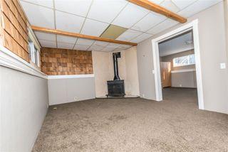 Photo 39: 3811 104 Street in Edmonton: Zone 16 House for sale : MLS®# E4182095