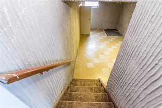Photo 41: 3811 104 Street in Edmonton: Zone 16 House for sale : MLS®# E4182095
