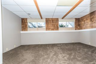 Photo 38: 3811 104 Street in Edmonton: Zone 16 House for sale : MLS®# E4182095