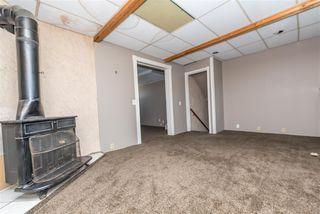 Photo 40: 3811 104 Street in Edmonton: Zone 16 House for sale : MLS®# E4182095