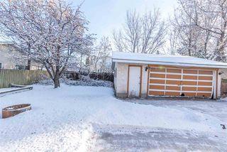 Photo 50: 3811 104 Street in Edmonton: Zone 16 House for sale : MLS®# E4182095