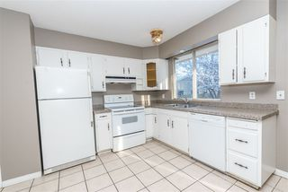 Photo 17: 3811 104 Street in Edmonton: Zone 16 House for sale : MLS®# E4182095